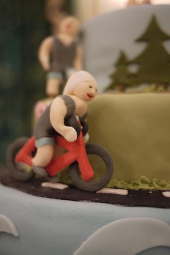tirathlon cake bike