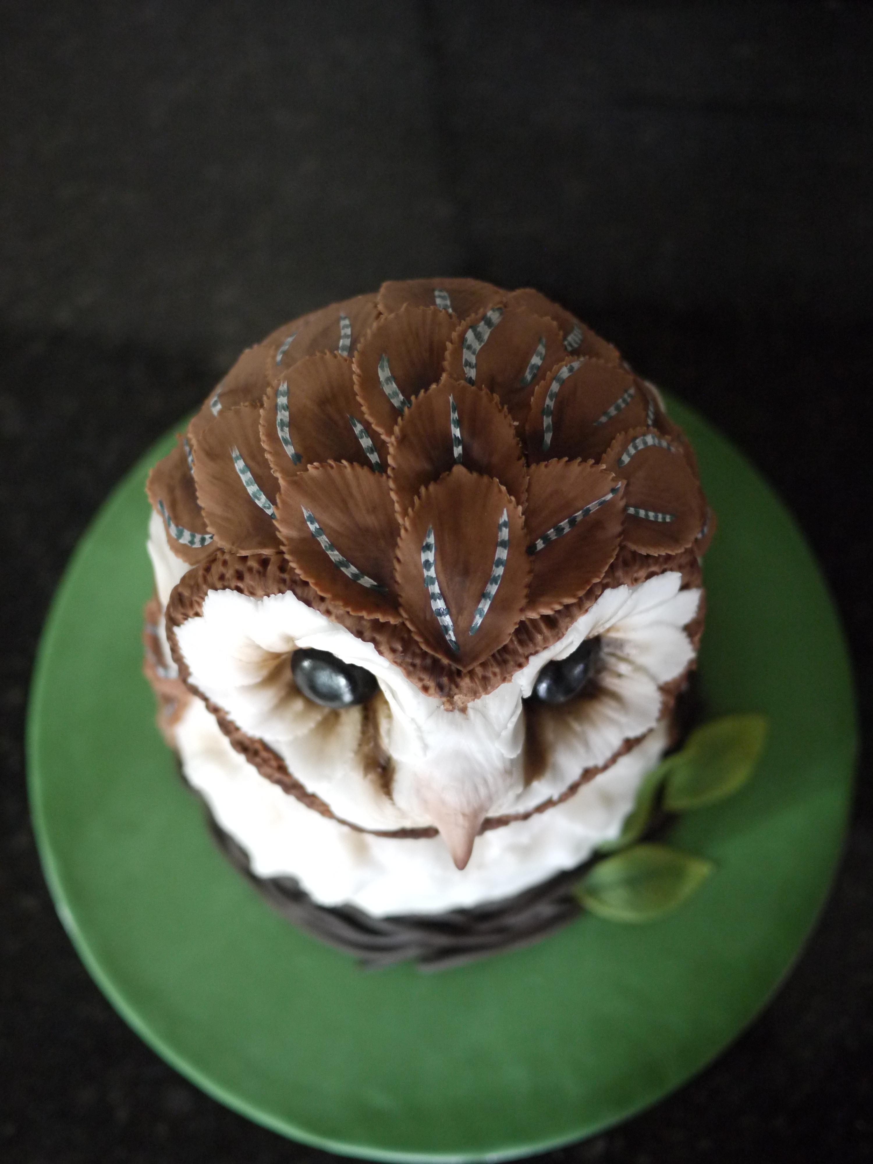 Barn Owl Cake Gloverly Cupcakes